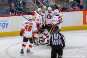 5 Alasan Kenapa Anda Harus Mengunjungi Stockton Heat Hockey Musim Ini